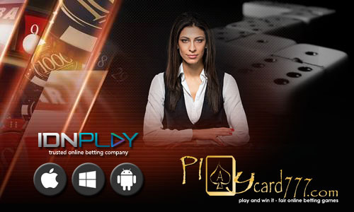 Domino Bandar Ceme Online Indonesia IDNPlay