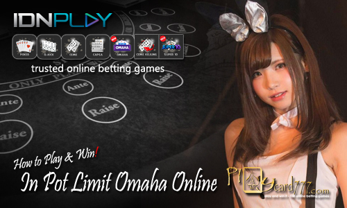 Cara Judi Pot Limit Omaha Online Indonesia